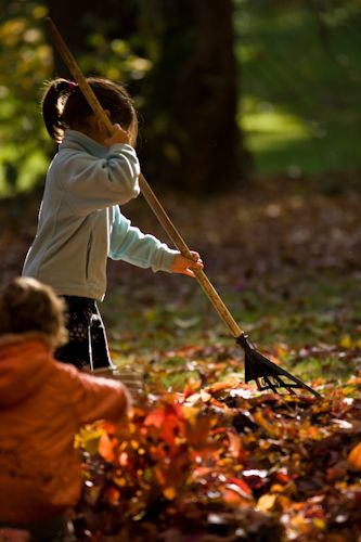 Kids playing with leaves in the autumn