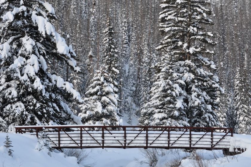 Media-Misc-Images-Winter-Scene-Byway